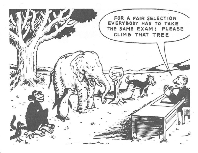 For a fair selection everyone has to take the same exam: please climb that tree.